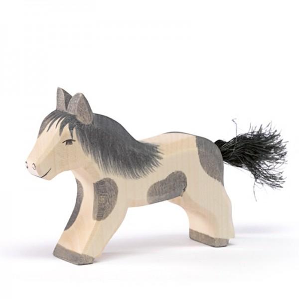 Ostheimer Shetland Pony laufend 11304